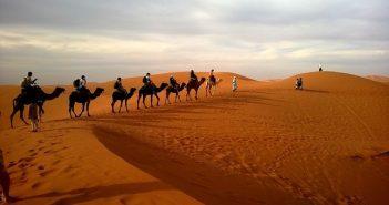 Valise pour un voyage en Afrique