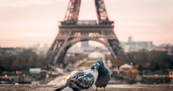 Voyage, site touristique, voyage à Paris